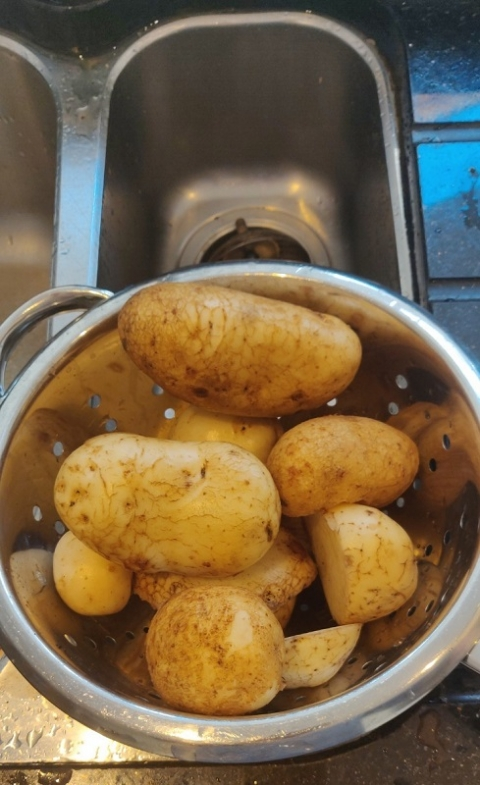 Our Own Potatoes!